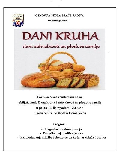 dani-kruha4